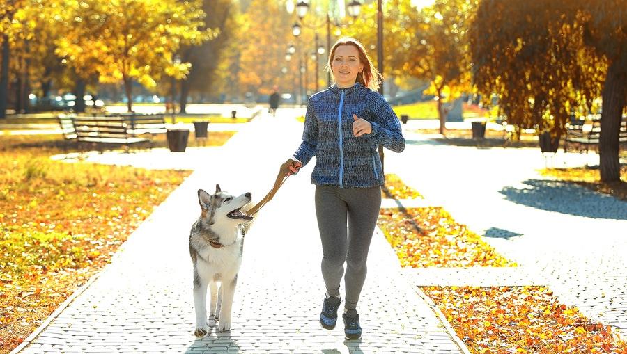 joggeranddog.jpg