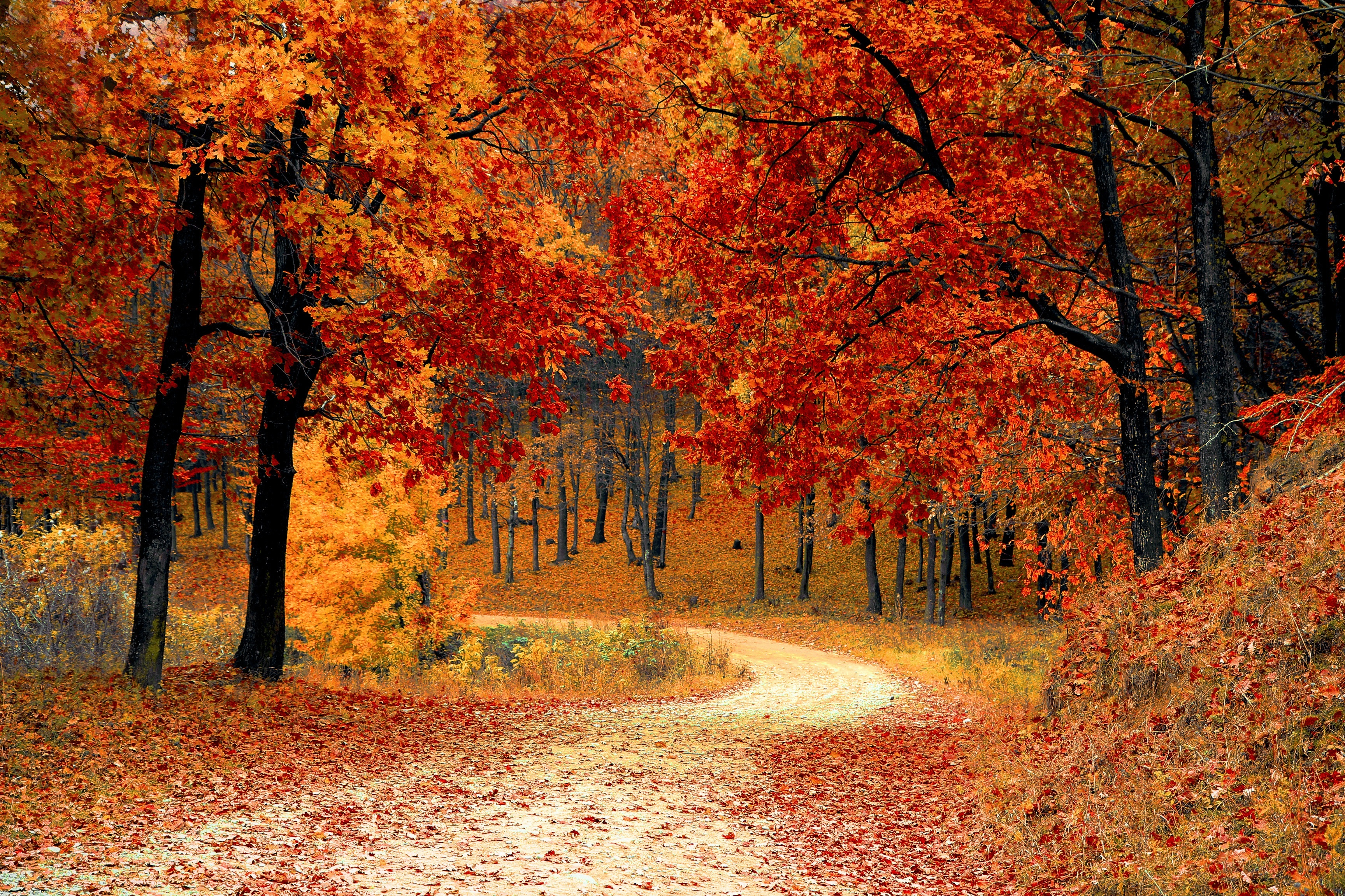 4 Ways to Overcome Joint Pain This Fall